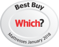 leesa mattress review awards which?