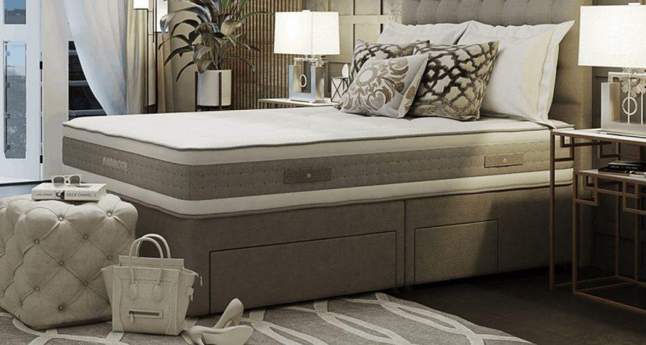 mammoth shine advanced softer mattress